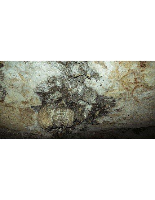 Techo de cueva