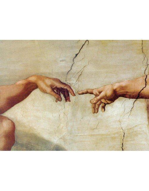 La creación de Miguel angel