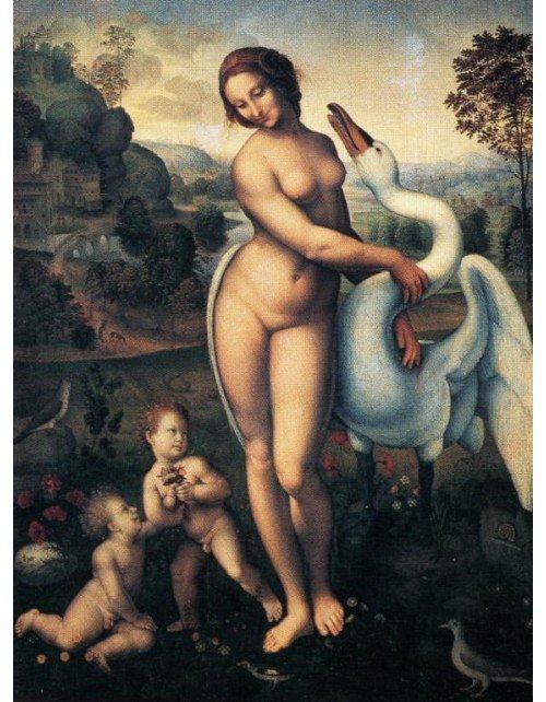 Lamina Leda de Leonardo