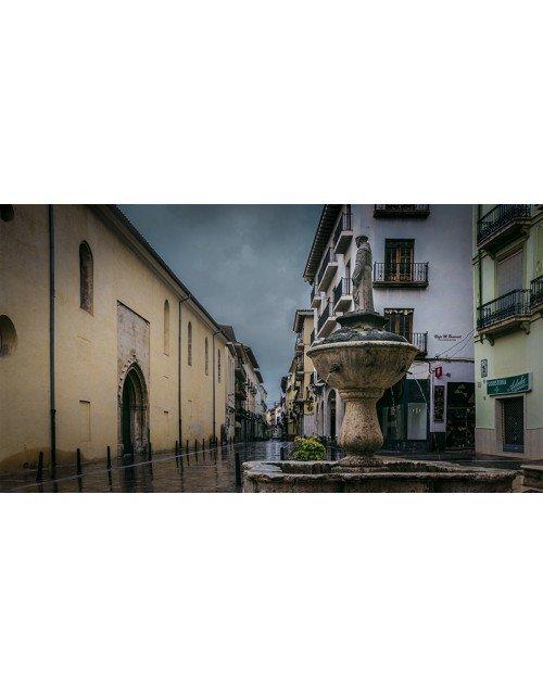 Fuente de San Fracisco