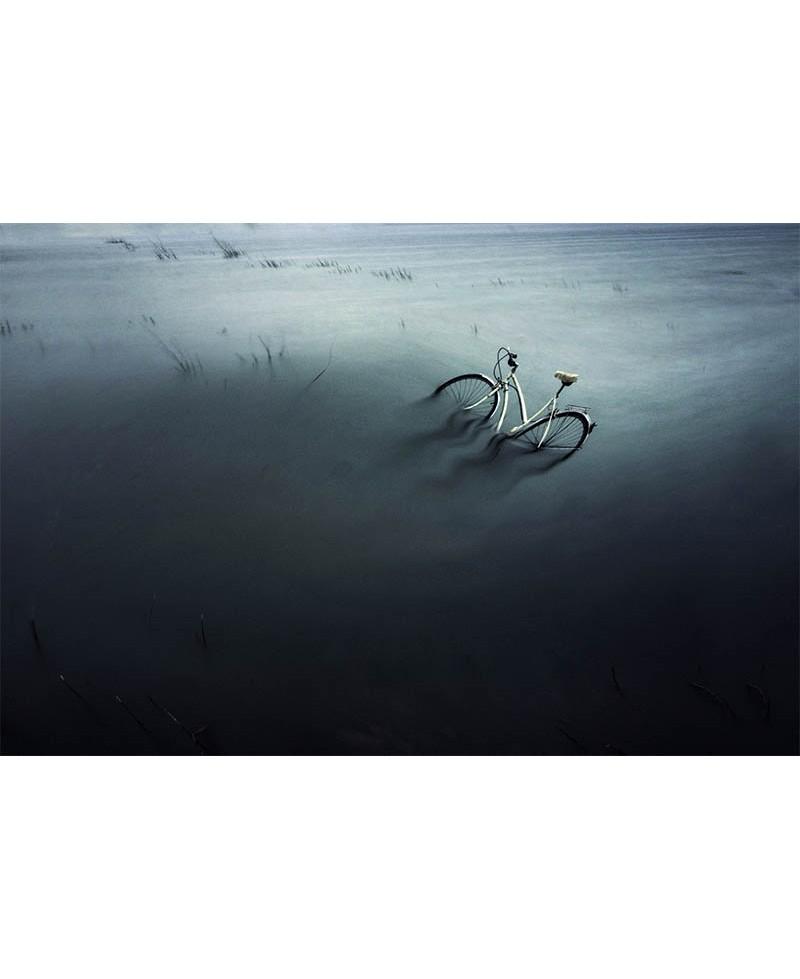 Bicicleta en el pantano